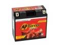 Batterie moto BANNER YT12B-BS / 12v 10ah