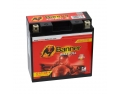 Batterie moto BANNER YT14B-4 / 12v 12ah