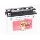 Batterie quad BANNER Y50-N18L-A / 12v 20ah